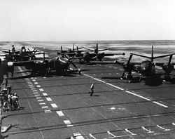 '[USS CORAL SEA TRIBUTE SITE]' from the web at 'http://www.usscoralsea.net/images/vtn_web_cva43natcajsrl2.jpg'